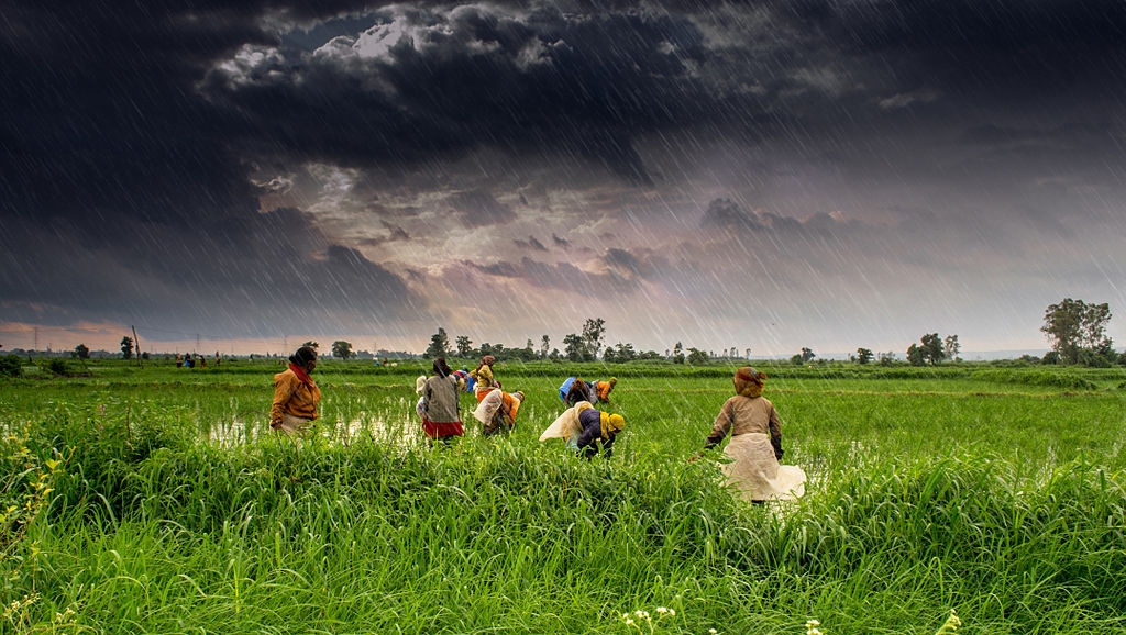 Artificial Intelligence Is Transforming The Agricultural Sector Of India