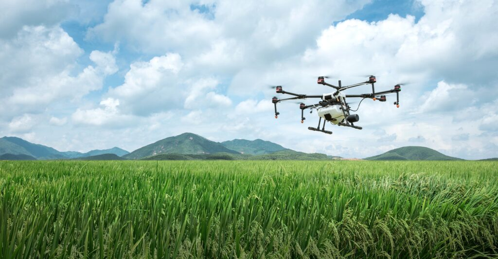 Emerging technologies such as Artificial Intelligence is transforming the agricultural sector of India.